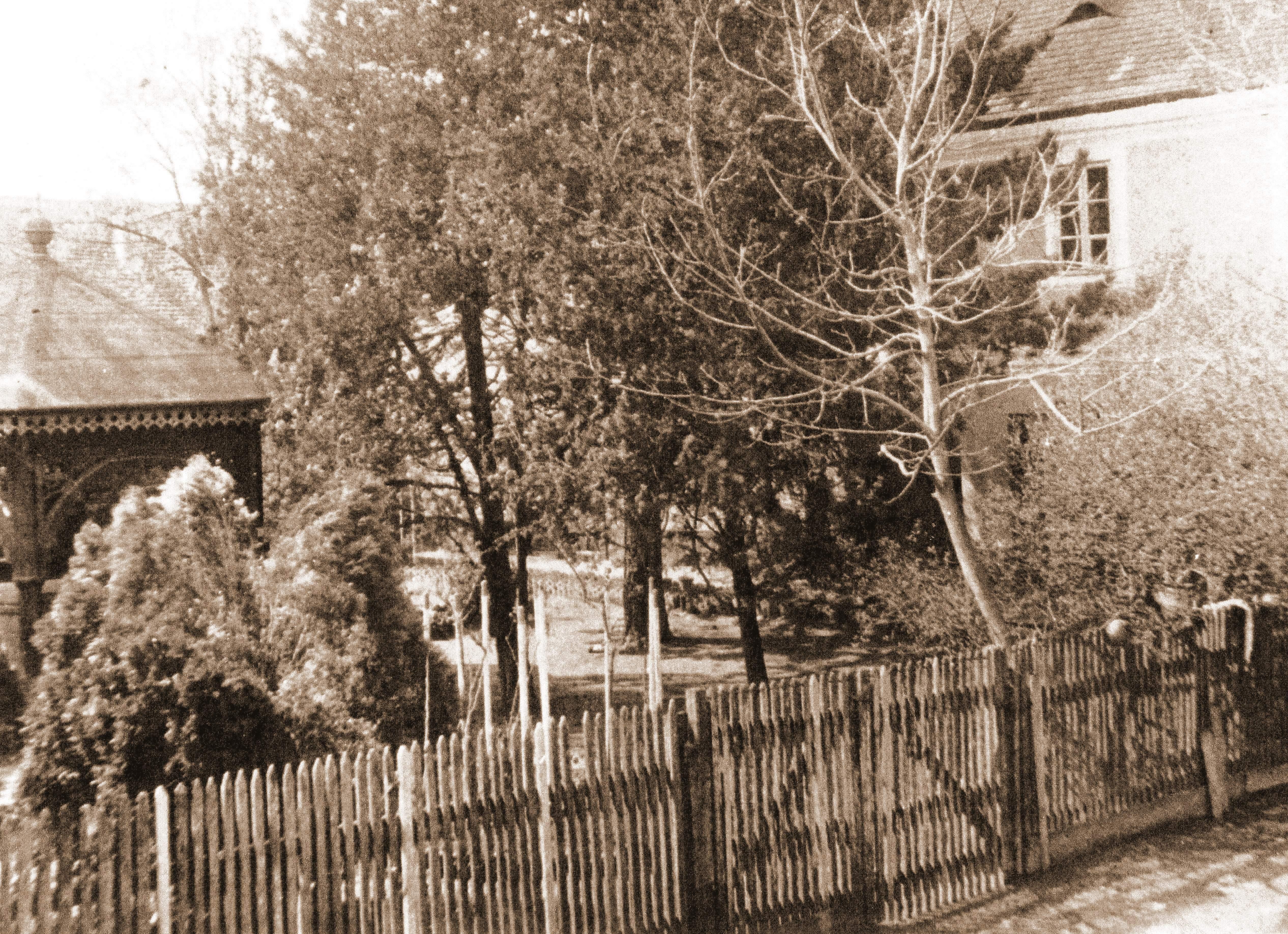milankovic-dvor-3