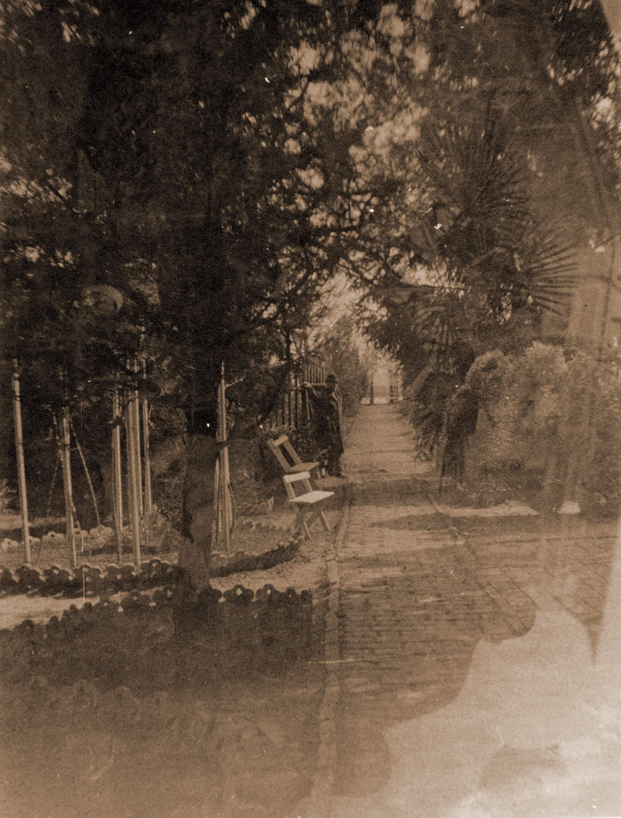 milankovicev-vrt-2-sepija